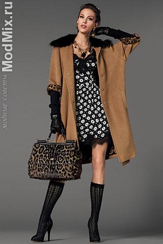 Из модной коллекции Dolce & Gabbana